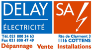 Delay SA Logo